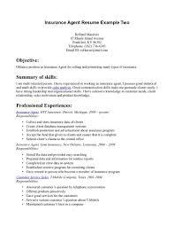 Insurance Resume Example Insurance Resume Sample Shalomhouseus 1