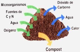 Resultado de imagen para compost