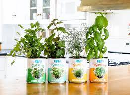 indoor herb garden kit. The Healthiest Indoor Herb Garden Kit | Garden-in-a-Can Back To Roots ® \u2013 T