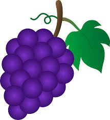 Image result for cartoon grapes