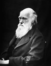 Charles Darwin - Pictures, Photos & Images of Scientists - Science ...