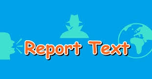 Image result for report text