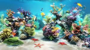 Aquarium Backgrounds 50 Best Aquarium Backgrounds Free Premium Templates