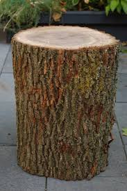 You can dry the stump outside for a couple of months, then bring it inside  for a couple of weeks.