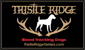 Blood Tracking Dogs Thistle Ridge Terriers Texas Jack Russell