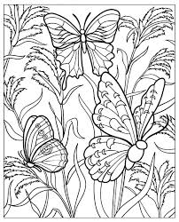 Challenging Coloring Pages For Adults Butterfly Coloring Pages For