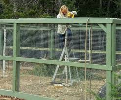 10x10 Chicken Coop Design How To Build A Predator Proof Chicken Run The Old Farmers