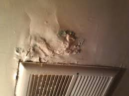 remove mold from bathroom ceiling. How To Clean Mould From Bathroom Ceiling Thedancingpa Com Remove Mold