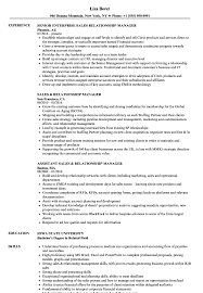 Sales Relationship Manager Resume Samples Velvet Jobs