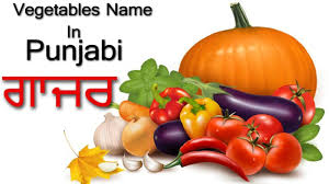 Learn Vegetable Names In Punjabi Pronunciation Of Vowels Matra Learn The Language For Beginner