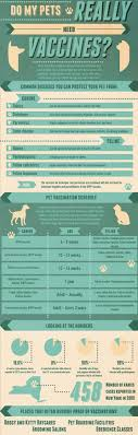 vaccination schedule for dogs what shots your dog needs and when do my pets really need vaccines