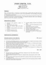 Experience Based Resume Template Unique Project Manager Resume ...