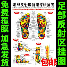 Usd 6 49 Tcm Culture Poster Foot Reflex Zone Health Liao