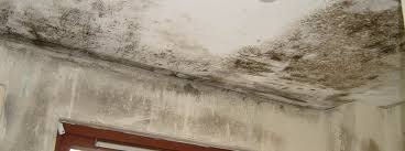 Bedroom Damp Caused By Poor Air Circulation