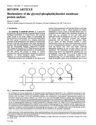 biochemistry of the glycosyl phosphatidylinositol membrane protein pdf extract preview