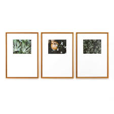 Framebridge Designers Choice Custom Picture Frames Online Art Framing Framebridge