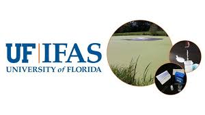 Online Garden Design Courses Fascinating University Of Florida IFAS Extension Offers Irrigation Water