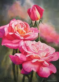 rose watercolor painting rose watercolor painting