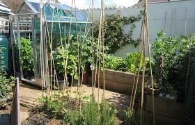 Small Picture Christine Lees Garden Design A Garden In Bedfordshire
