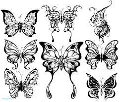 Coloriage Mandala Chat Papillon Best Of Coloriage Papillons