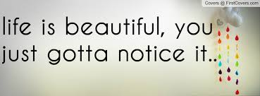 Beautiful Quotes On Life For Facebook Best Of Life Is Beautiful You Just Gotta Notice It Facebook Quote Cover