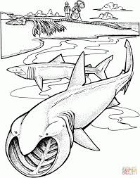 Small Picture Coloring Download Megalodon Shark Pages With glumme