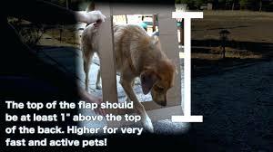 endura flap dog door flap quick panel iii patio pet door endura flap dog door installation