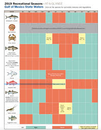 Florida Saltwater Fishing Regulations Chart Panama City Beach Fishing Resources