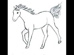 Small Picture How To Draw a Horse Baby Horse in Simple Steps YouTube