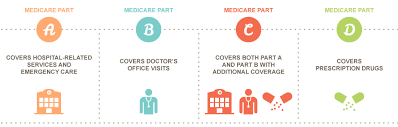 Had medicare before becoming eligible for cobra: Parts Of Medicare Differentiating Medicare Part A B C And D