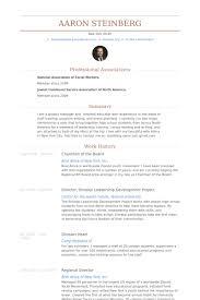 Chairman Of The Board Resume Samples Visualcv Resume Samples Database