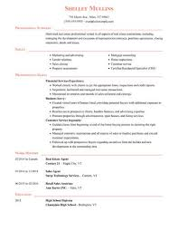 It Resumes Templates Resume Templates Easy To Customize Online Templates