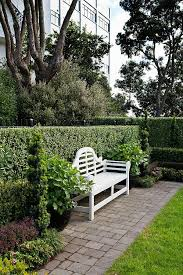 Small Picture Best 20 Garden hedges ideas on Pinterest Hedges Boxwood hedge