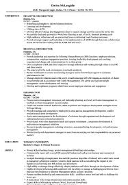 Hr Director Resume Picture Collection Website Sample For Human ...