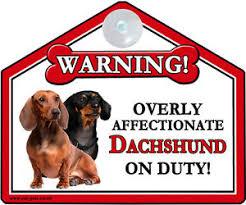 image is loading dachshund gift window car suction sign novelty warning