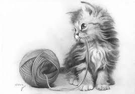 Immagini Di Gatti Per Disegnare E Copiare Più Di 100 Fotografie