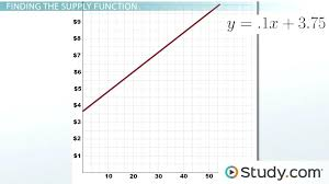 linear equation applying systems of linear equations to market equilibrium steps example lesson transcript linear linear equation