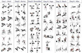 Day By Day Exercise Chart Weider 8530 Exercise Chart Pdf Weider 8630 Weight Chart
