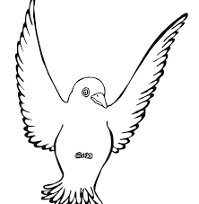 Stirring Free Printable Birdg Pages Tweety For Adults Nest Bird