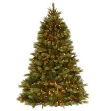 Eastern pine - Live Christmas Trees