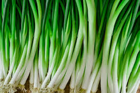 scallions plant care growing guide