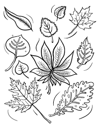 Small Picture Free Fall Leaves Coloring Page