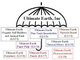 Umbrella Organization Chart Hand Picked Llc Organizational Chart Example Employee