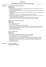 College Resume Sample College Practicum Resume Samples Velvet Jobs 19
