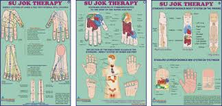 Sujok Therapy Points Chart Freeware Sujok Therapy Chart