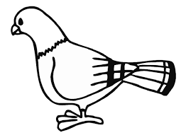 Small Picture Pigeon Coloring Pages olegandreevme