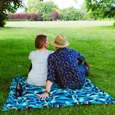 Image result for family picnic pics