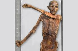 Картинки по запросу мумия Эци