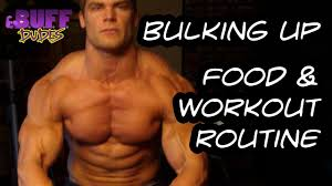 bulking up daily t and workout routine