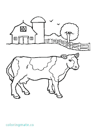 Coloring Pages Baby Animals Farm Animal For Preschool Free Coloring